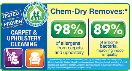 Upholstery Cleaning Services by Chem-Dry of Tampa