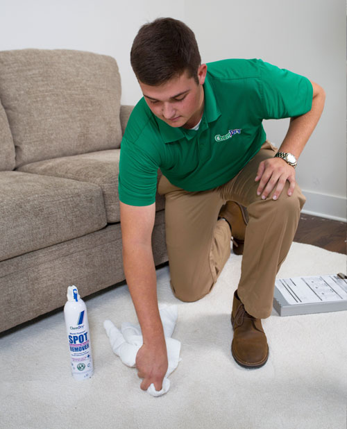 Specialty Stain Removal Service by Chem-Dry of Tampa