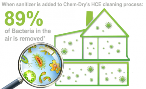 Chem-Dry of Tampa is your healthy home provider for professional carpet and upholstery cleaning